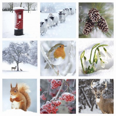 Winter Scene Montage Cards, Pack of 10