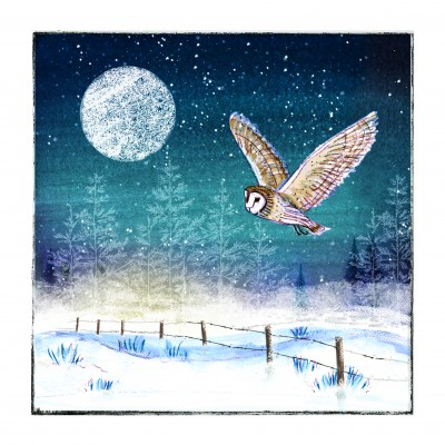 Moonlit Owl Cards, Pack of 10