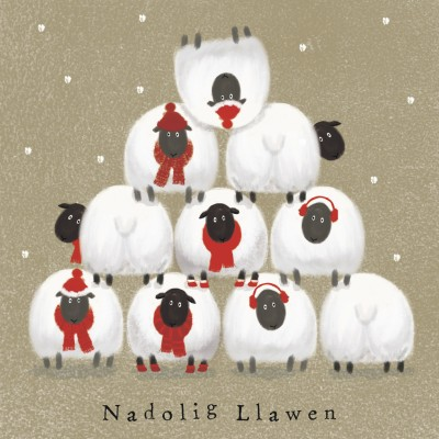 Stacked Sheep (welsh card)
