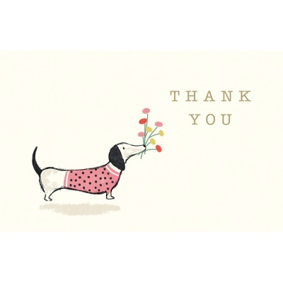 Thank You Cards Daschund, Pack of 8